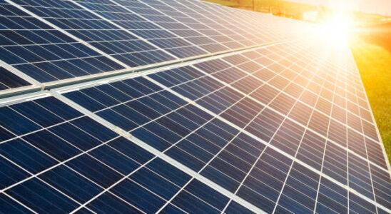 zonnepanelen op agrarische grond